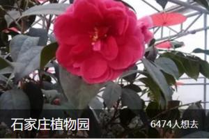 石家庄市植物园.png