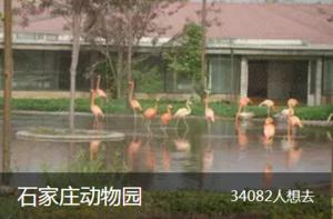 石家庄动物园.png